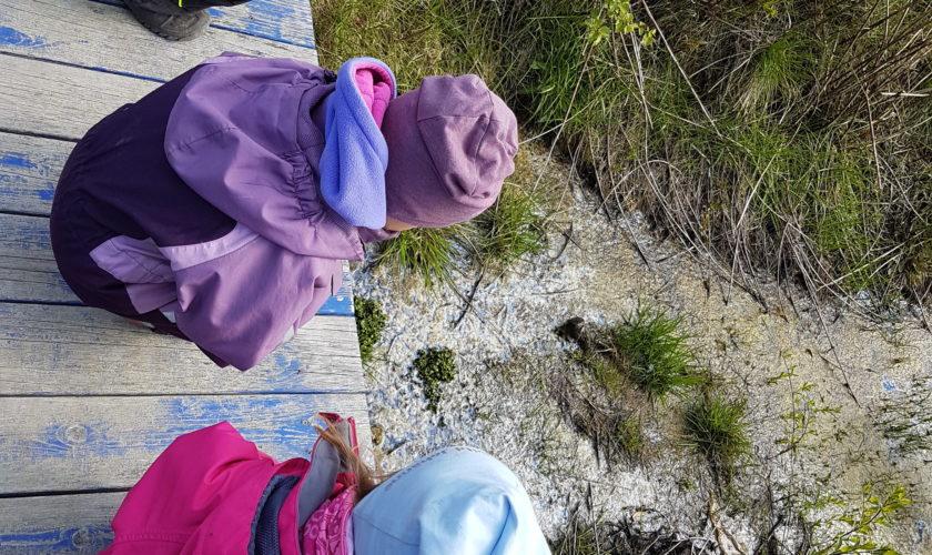 Beskyttet: Flere bilder fra Sandnesdalen