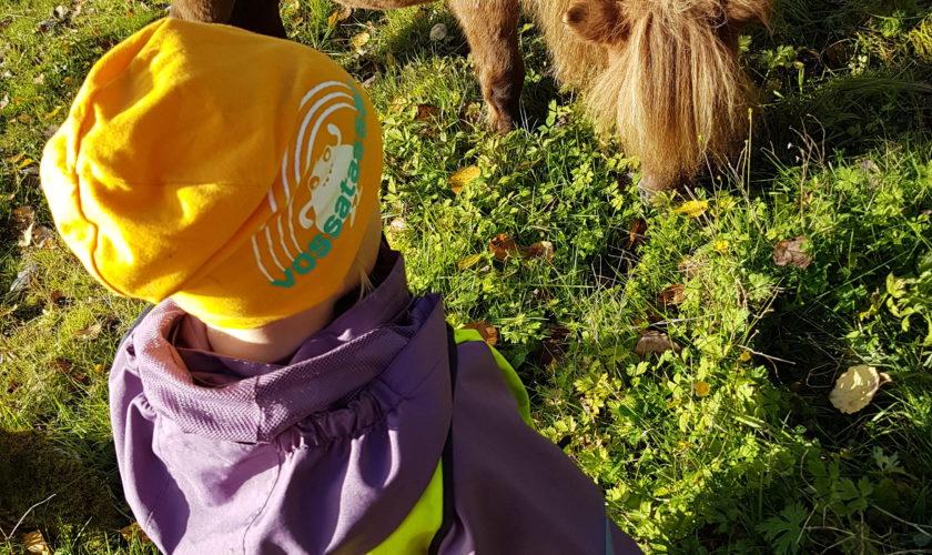 Beskyttet: Tur til Brattli med Gruva