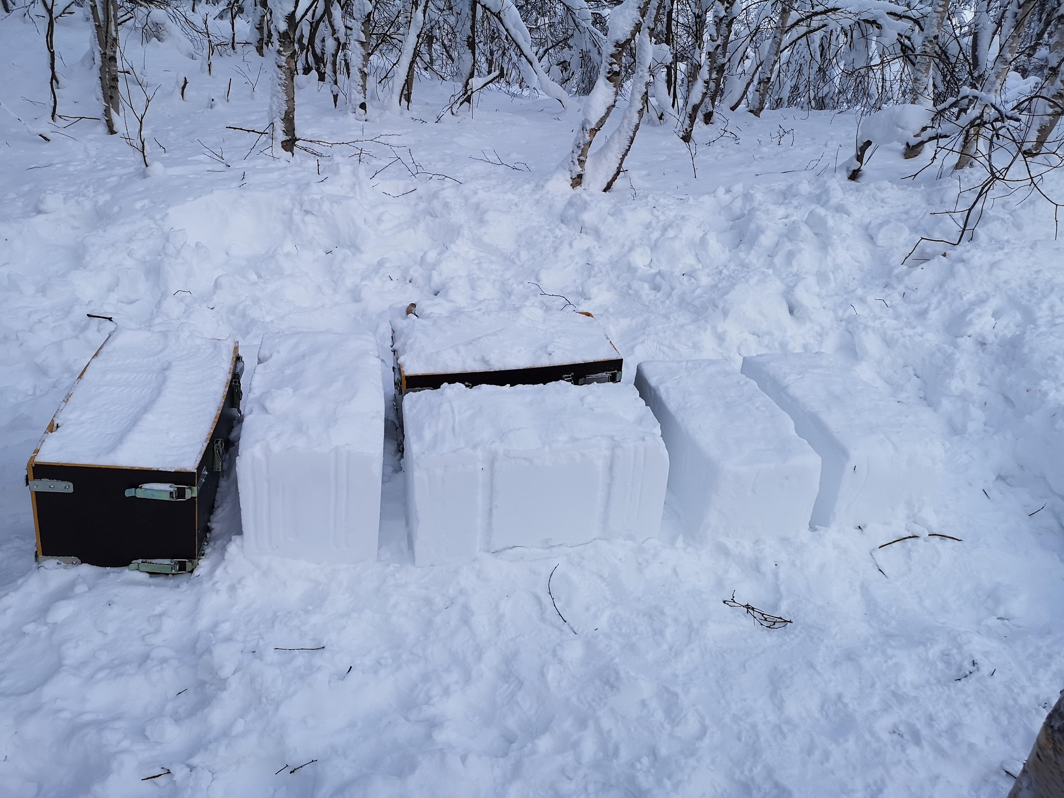 Beskyttet: Snøformer