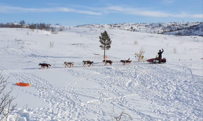 Beskyttet: Finnmarksløpet