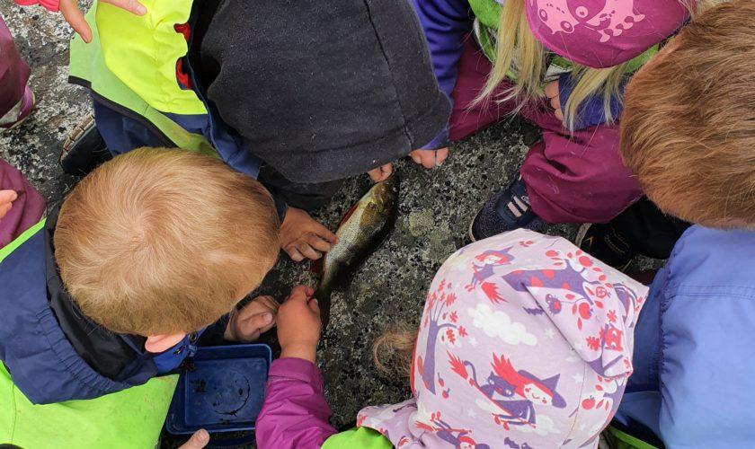 Beskyttet: Fisketur og formingsaktiviteter på Malmen